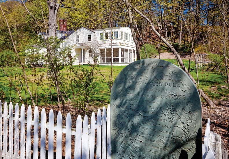 Preserving a Historic Cottage in Concord, Massachusetts - Old